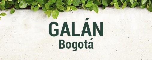 GALÁN BOGOTÁ - DOMICILIOS 313 396 98 15