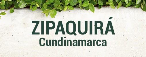 ZIPAQUIRÁ CUNDINAMARCA - DOMICILIOS 311 202 26 22