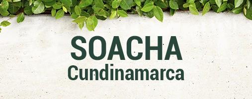 SOACHA CUNDINAMARCA - DOMICILIOS 316 470 44 71