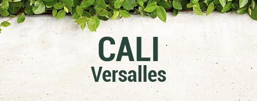 VERSALLES CALI - DOMICILIOS 315 388 05 54