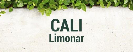 LIMONAR CALI - DOMICILIOS 321 753 30 96