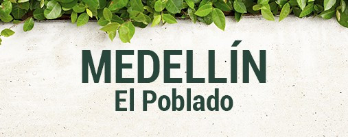 EL POBLADO MEDELLÍN - DOMICILIOS 305 433 40 29