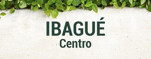 CENTRO IBAGUÉ - DOMICILIOS 300 212 55 62