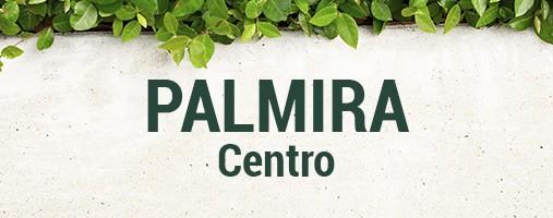 CENTRO PALMIRA - DOMICILIOS 316 559 04 03