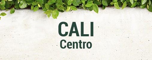 CENTRO CALI - DOMICILIOS 323 277 82 92