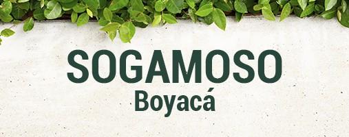 SOGAMOSO BOYACÁ - DOMICILIOS 310 802 40 86