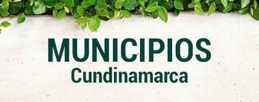 CUNDINAMARCA - DOMICILIOS 310 802 40 86