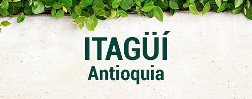 ITAGÜÍ ANTIOQUIA - DOMICILIOS 314 5778742