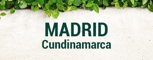 MADRID CUNDINAMARCA - DOMICILIOS 321 787 19 18