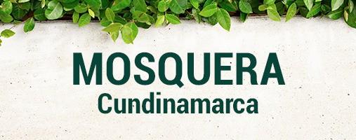 MOSQUERA CUNDINAMARCA - DOMICILIOS 321 787 19 18
