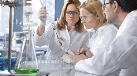 La Spirulina y el Sistema Inmune. Últimas investigaciones